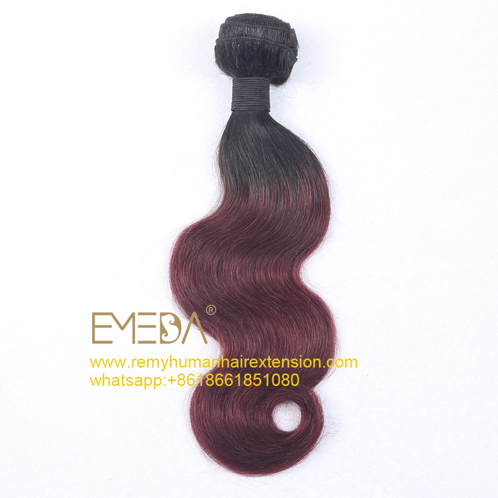 Ombre Color Hair Bundle Various Color Long Length WK020