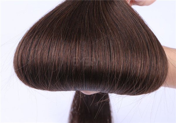 Human hair factory how much is tape in hair extensions in different color and length YL258
