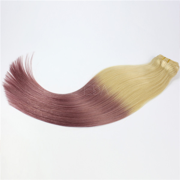 Wholesale Clip In Hair Extensions Ombre China Hair Clips Factory Human Hair Extensions LM330