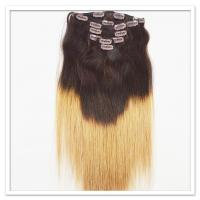 Real Remy Hair Clip In Extensions LJ252