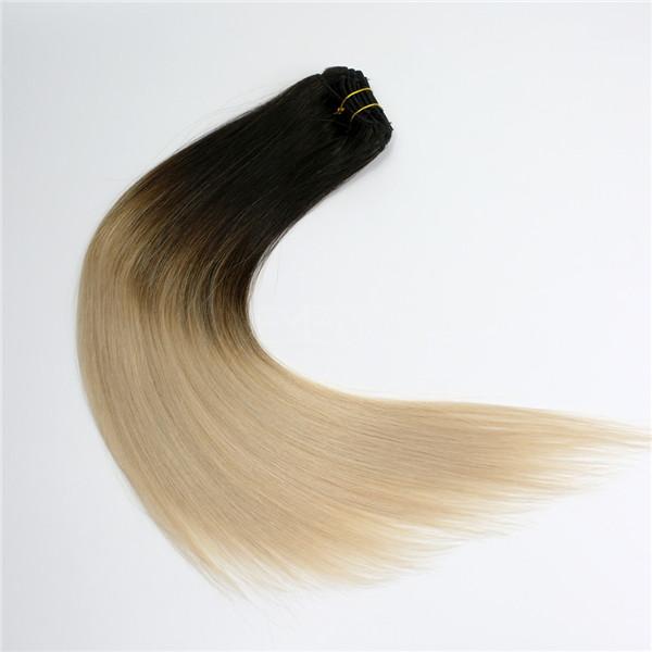 Clip In Human Hair Exztensions Lj217 Emeda Hair