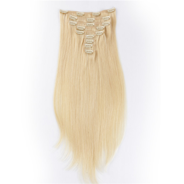 Clip In Human Remy Hair Extension Real Wholesale Indian Silky Hair Weave Extensions  LM438