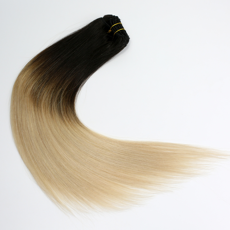 china_ombre_clip_in_tape_extensions_manufacturers.JPG