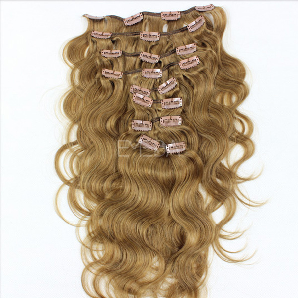 Types Of Clip In Human Hair Extensions Remy Indian Hair