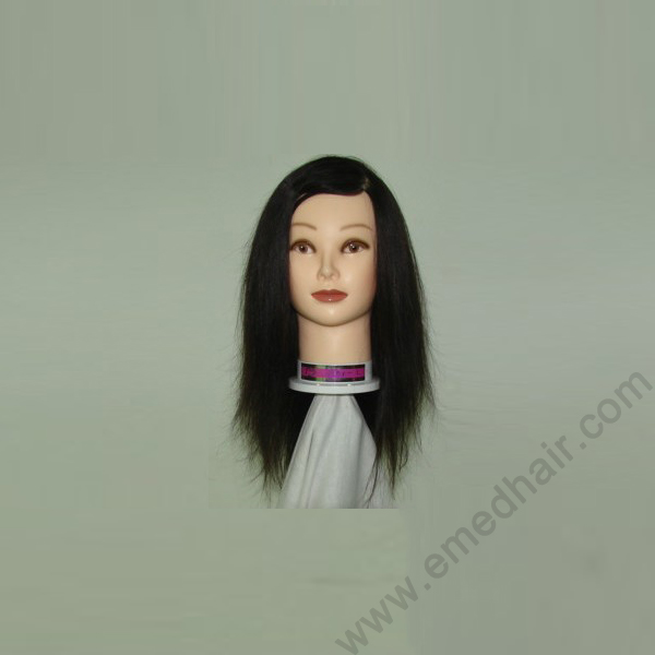 human hair training head