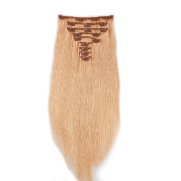 Clip in weft hair extensions SJ00104